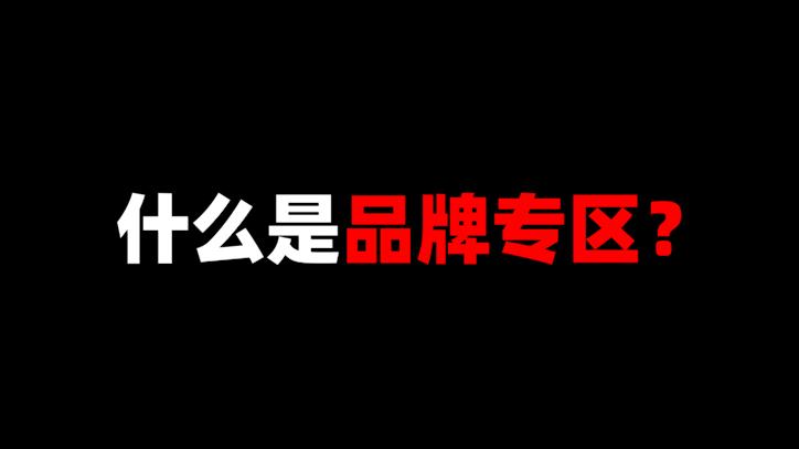 视频大讲堂:什么是品牌专区?